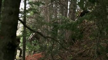 Bass Pro Shops Fall Hunting Classic TV Spot, 'Tradition of Conservation' - Thumbnail 4