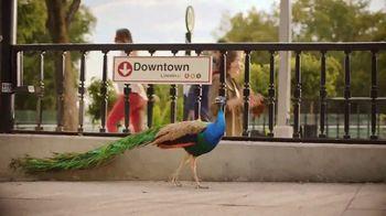 Corona Refresca TV Spot, 'Festival' - Thumbnail 5