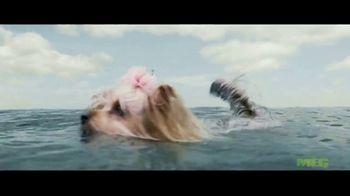 The Meg - Alternate Trailer 26