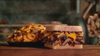 Arby's Smokehouse Sandwiches  TV Spot, 'Interesting' - 564 commercial airings