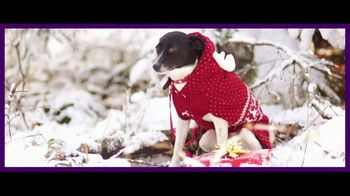 Subway Holiday Special TV Spot, 'Better Than a Holiday Sweater' - Thumbnail 3
