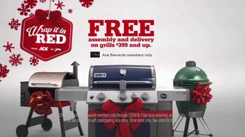 ACE Hardware TV Spot, 'Ace Grills: Free Assembly and Delivery' - Thumbnail 2