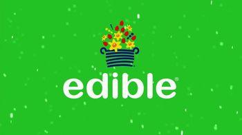 Edible Arrangements TV Spot, 'Holidays: The Sweet Way'