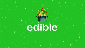 Edible Arrangements TV Spot, '2018 Holidays: The Sweet Way' - Thumbnail 8