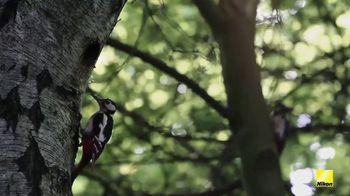 Nikon Monarch HG TV Spot, 'Birds' - Thumbnail 7