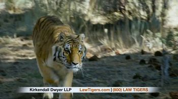Law Tigers TV Spot, 'Embrace the Unknown' - Thumbnail 9