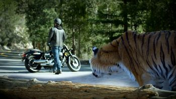 Law Tigers TV Spot, 'Unexpected Turn' - 45 commercial airings
