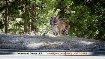 Law Tigers TV Spot, 'Unexpected Turn' - Thumbnail 6