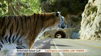 Law Tigers TV Spot, 'Unexpected Turn' - Thumbnail 9