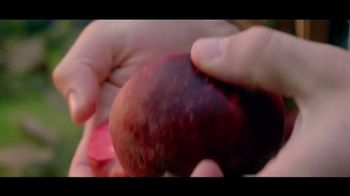 Angry Orchard Rose TV Spot, 'NBC: Kentucky Derby Rose Club' Ft. Johnny Weir - Thumbnail 8