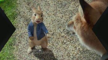 XFINITY On Demand TV Spot, 'X1: Peter Rabbit' - Thumbnail 2