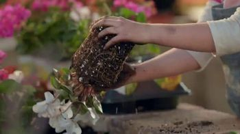 The Home Depot TV Spot, 'Heartier Plants' - Thumbnail 4
