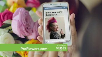 ProFlowers TV Spot, ' Mother's Day: Free Glass Vase' - Thumbnail 7