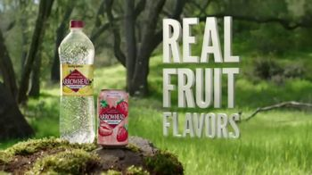 Arrowhead Sparkling Water TV Spot, 'Nature, Not Slo-Mo Models' - Thumbnail 9