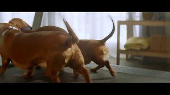 Nature's Recipe TV Spot, 'Treadmill'
