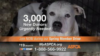ASPCA TV Spot, 'New Donors Urgently Needed' - Thumbnail 4