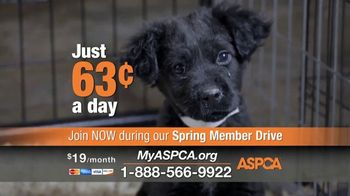 ASPCA TV Spot, 'New Donors Urgently Needed' - Thumbnail 5
