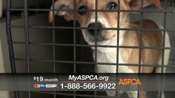 ASPCA TV Spot, 'New Donors Urgently Needed' - Thumbnail 7