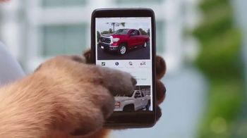 CarFax.com TV Spot, 'Man and Dog Ashamed After Overpaying for Used Car' - Thumbnail 4