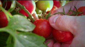 Sysco TV Spot, 'Farm-Fresh Ingredients' - Thumbnail 1