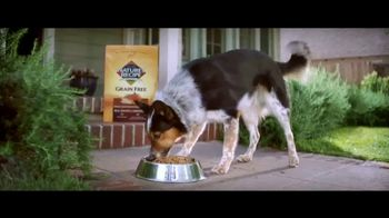 Nature's Recipe Grain Free TV Spot, 'Measured in Wags'