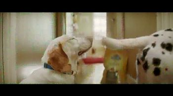Nature's Recipe Grain Free TV Spot, 'Measured in Wags' - Thumbnail 6