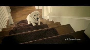 Cosequin TV Spot, 'Joint Health Supplements for Your Dog'