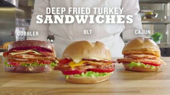 Arby's Deep Fried Turkey Sandwiches TV Spot, 'For Now' Featuring H. Jon Benjamin - Thumbnail 7