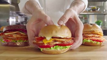 Arby's Deep Fried Turkey Sandwiches TV Spot, 'For Now' Featuring H. Jon Benjamin - 1793 commercial airings