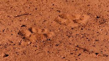SAS TV Spot, 'Wild Track' - Thumbnail 6