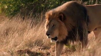 SAS TV Spot, 'Wild Track' - Thumbnail 8