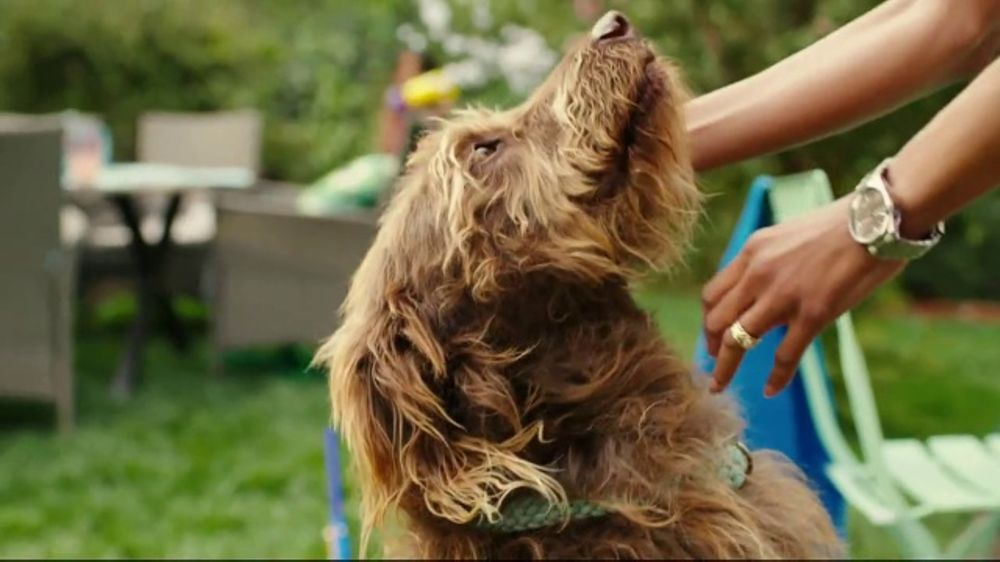 JCPenney TV Commercial, 'Summer Savings for the Family'  Song by Redbone