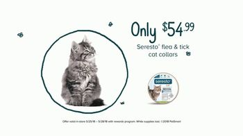 PetSmart TV Spot, 'Everything You Need for Your Cat' - Thumbnail 6