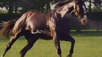 Lane's End TV Spot, 'Union Rags: A Stallion That Stands Above the Rest' - Thumbnail 10