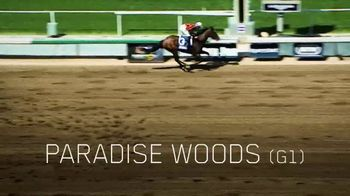 Lane's End TV Spot, 'Union Rags: A Stallion That Stands Above the Rest' - Thumbnail 6