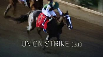 Lane's End TV Spot, 'Union Rags: A Stallion That Stands Above the Rest' - Thumbnail 7