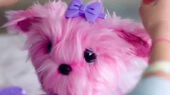 Scruff-a-Luvs TV Spot, 'Find Us Scruffy, Make Us Fluffy' - Thumbnail 6