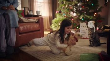 PetSmart TV Spot, 'Cats and Dogs' - Thumbnail 1