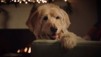 PetSmart TV Spot, 'Cats and Dogs' - Thumbnail 7
