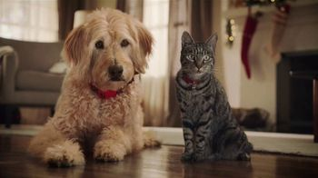 PetSmart TV Spot, 'Cats and Dogs' - 2569 commercial airings