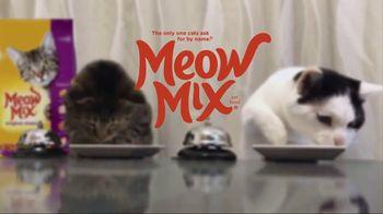 Meow Mix TV Spot, 'Standing Cat' - Thumbnail 9