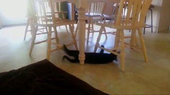 Meow Mix TV Spot, 'Standing Cat' - Thumbnail 2