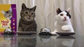 Meow Mix TV Spot, 'Standing Cat' - Thumbnail 7