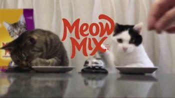 Meow Mix TV Spot, 'Standing Cat' - Thumbnail 8