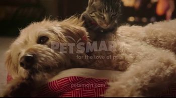 PetSmart TV Spot, 'With You Through the Holidays' - Thumbnail 10