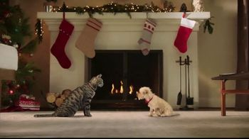 PetSmart TV Spot, 'With You Through the Holidays' - Thumbnail 4