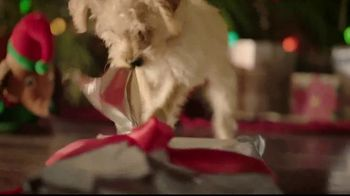 PetSmart TV Spot, 'With You Through the Holidays' - Thumbnail 6