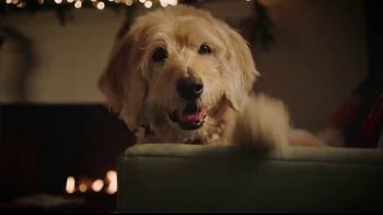 PetSmart TV Spot, 'With You Through the Holidays' - Thumbnail 8
