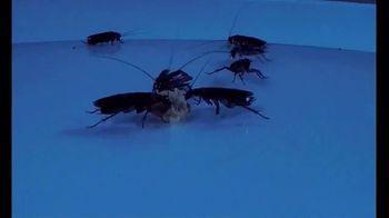 Roach Doctor TV Spot, 'Stop the Nightmare'