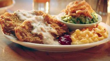 Cracker Barrel Country-Fried Turkey TV Spot, 'Warm Feelings of Home' - Thumbnail 3